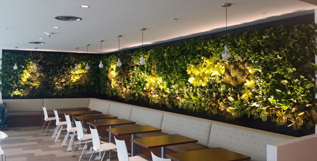 Living green wall vertical plant trays sub irrigation automatic living green wall vertical plant trays sub irrigation automatic plant watering aloadofball Gallery