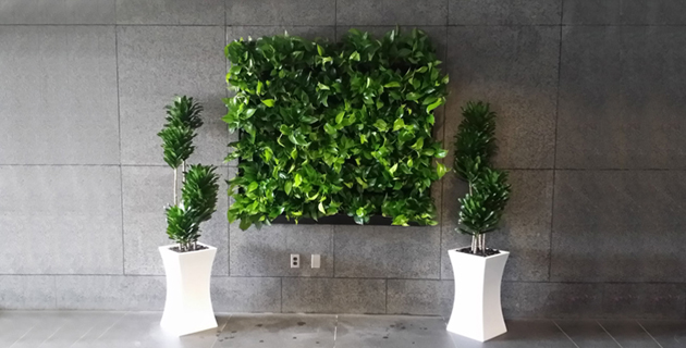 Living Green Wall Vertical Plant Trays / Sub-Irrigation